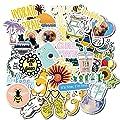 Vinyl Stickers Pack For Laptop Water Bottles Vsco Teen Girls Stickers Trendy Cute Waterproof