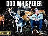 Dog Whisperer with Cesar Millan Season 6