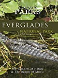 Nature Parks - Everglades, Florida