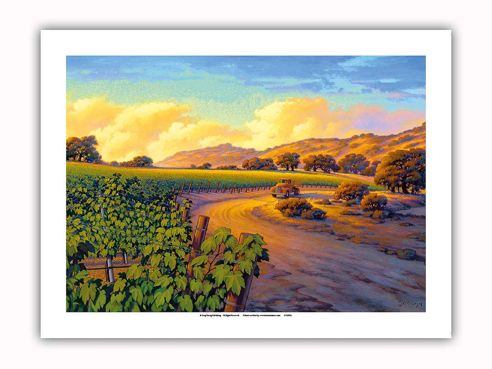 Pacifica Island Art - Vineyard Sunset - Wine Country Art by Kerne Erickson - Premium 290gsm Giclée Art Print 12in x 16in