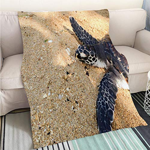 - Super Soft Flannel Thicken Blanket Juvenile Hawksbill Turtle on The Beach in Indonesia Perfect for Couch Sofa or Bed Cool Quilt