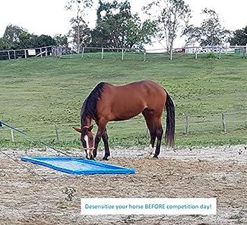 Horse Training Aid Water Jump Liverpool Horse Jump Portable