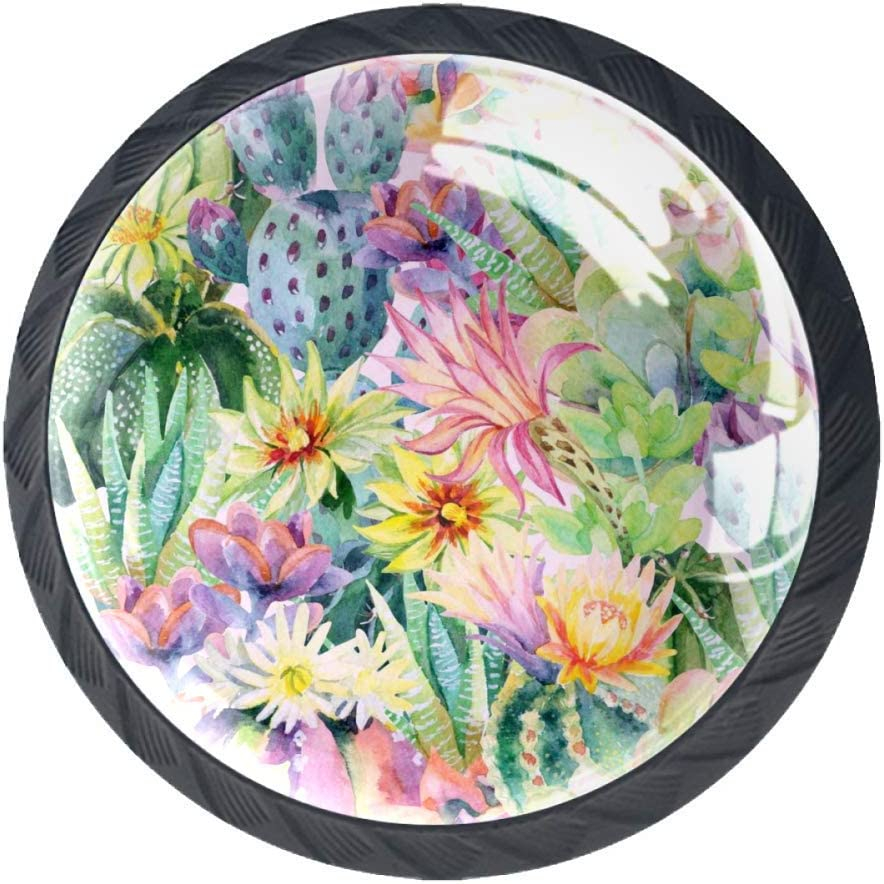 Plantas suculentas y cactus Cajonera de jardín Armario Perillas de cajón Forma redonda de vidrio Tirador para puerta de gabinete Armario Armario 4 piezas