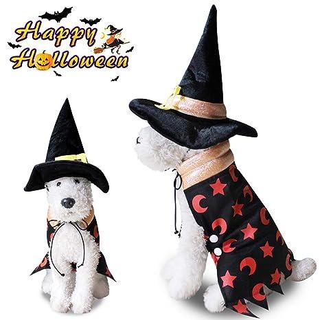 Halloween Bruja Capa Ropa Perro Gato Invierno, Morbuy Mascota ...