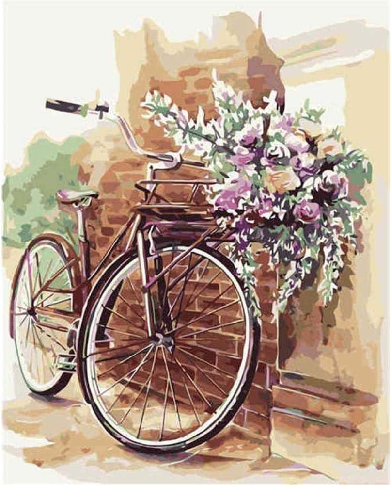 Diy pintura al óleo flor bicicleta cuadros por números acrílico digital pintado a mano lienzo pinturas cuadros de pared para sala de estar 40x50 cm-With Frame: Amazon.es: Hogar