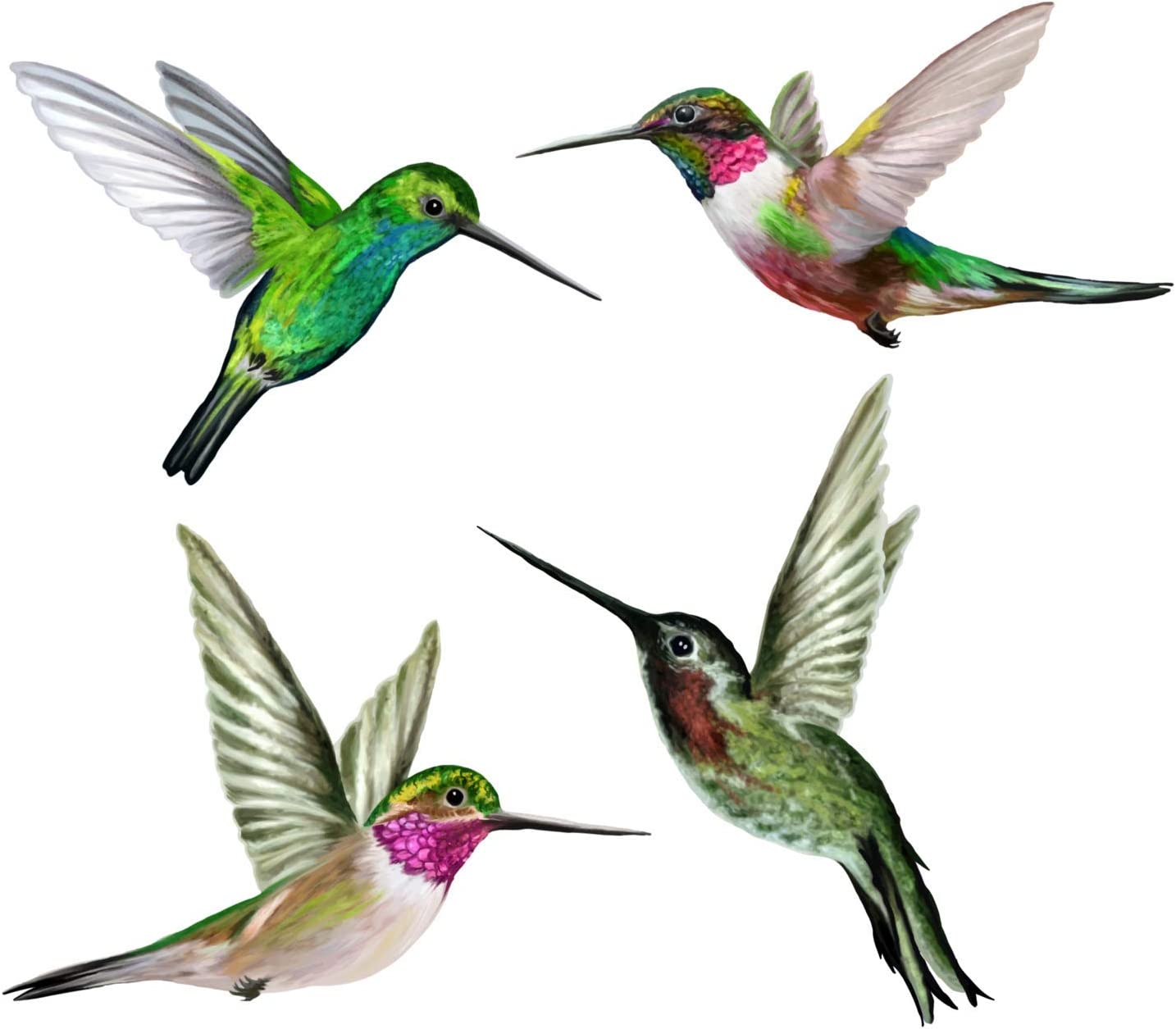 Anti-Collision Window Clings/Decals to Prevent Bird Strikes on Window Glass - Set of 4 Hummingbird Window Clings