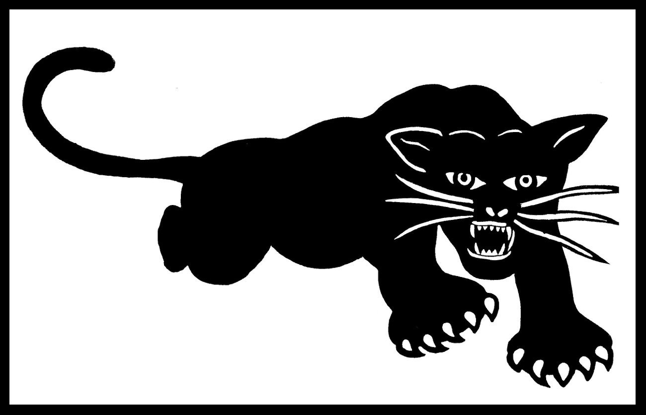 Amazon com new sticker black panther party for self defense panthers 60s 1960s radical toys games