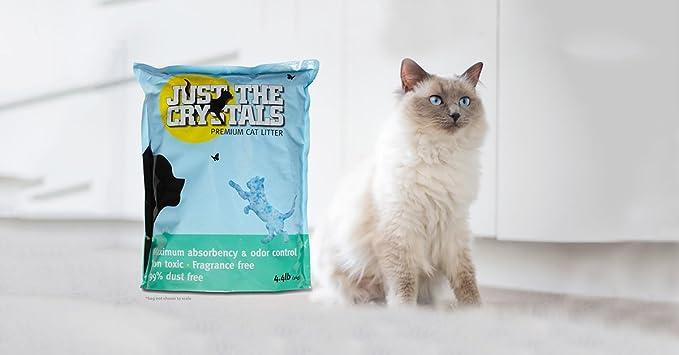 Amazon.com: Arena de cristal para gatos, absorbe más ...
