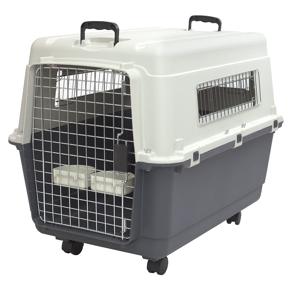 SportPet Designs Plastic Kennels Rolling Plastic Wire Door Travel Dog Crate- Large Kennel