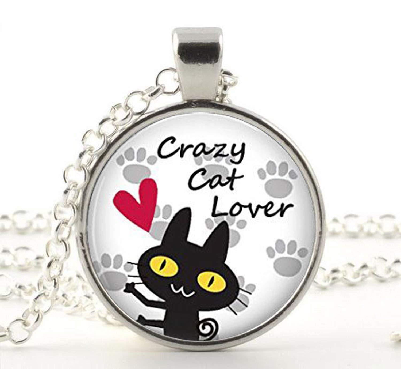 Amazon.com: Crazy amante de los gatos: cúpula de vidrio ...