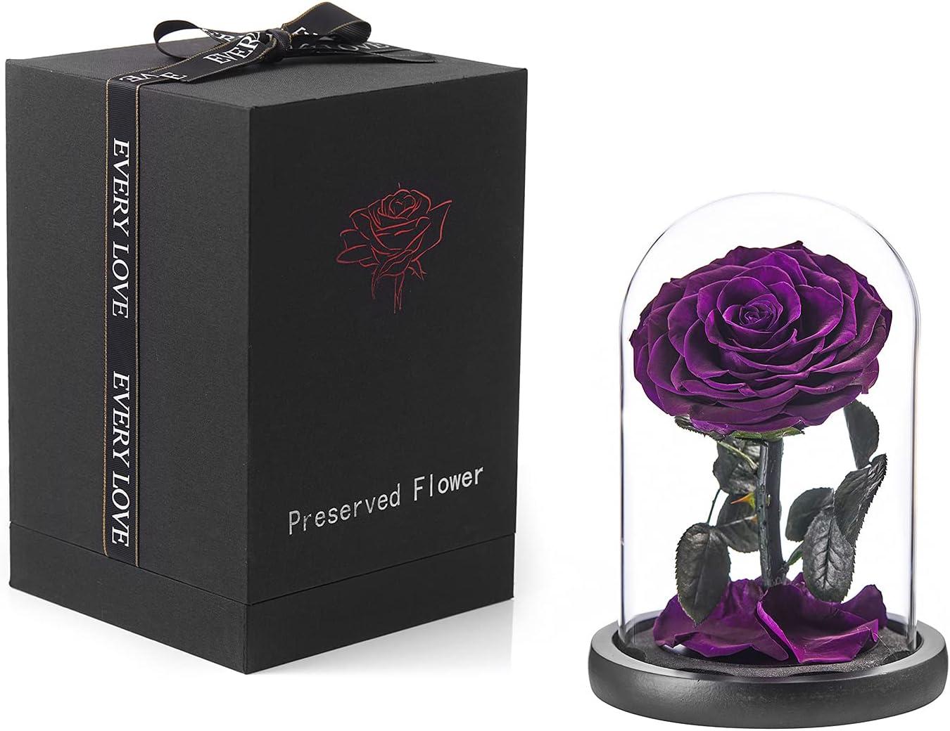 Eterfield Preserved Real Rose Handmade Doo Wholesale in Glass Arlington Mall Eternal