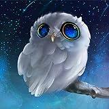 5D Diamond Painting, Staron Home Decor Owl DIY Diamond Rhinestone Pasted Painting by Number Needlework Cross Stitch…