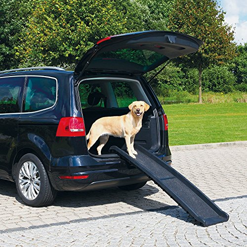 All for Paws Large Dog Car Ramp Foldable Dog Safety Ramp for SUVs, Trucks, 62 Inch
