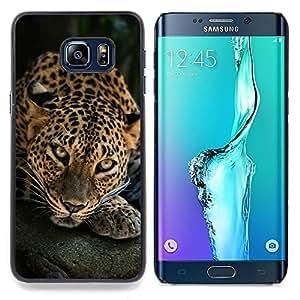 """Qstar Arte & diseño plástico duro Fundas Cover Cubre Hard Case Cover para Samsung Galaxy S6 Edge Plus / S6 Edge+ G928 (Leopardo del gato grande Felino naturaleza animal"""")"""