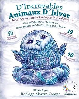 Coloriage Cheval Hiver.Amazon Com Anti Stress Livre De Coloriage Pour Adultes D