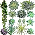 Supla Pack of 14 Artificial Fake Succulent Plants Unpotted String of Pearls Echeveria Succulent Picks in Flocked Green in Different Type Different Size for Floral Arrangement