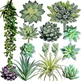 Supla Pack of 14 Artificial Fake Succulent Plants Bulk Unpotted Faux String of Pearls Echeveria Stems Succulent Picks in Flocked Green in Different Type Different Size for Floral Arrangement