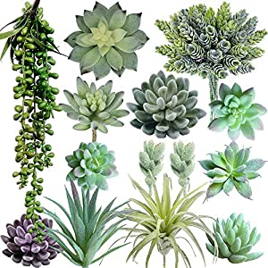 Supla Pack of 14 Artificial Fake Succulent Plants Unpotted String of Pearls Echeveria Succulent Picks in Flocked Green in Different Type Different Size for Floral Arrangement 33