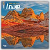 Arizona, Wild & Scenic 2018 12 x 12 Inch Monthly Square Wall Calendar, USA United States of America Southwest State Nature