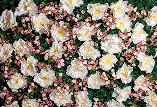 CSFOTO 5x3ft Background Blooming Flowers Wall Wedding Ceremony Decor Photography Backdrop Anniversary Party Ornament Flower Bud Romantic Artistic Engagement Photo Studio Props Polyester Wallpaper ()