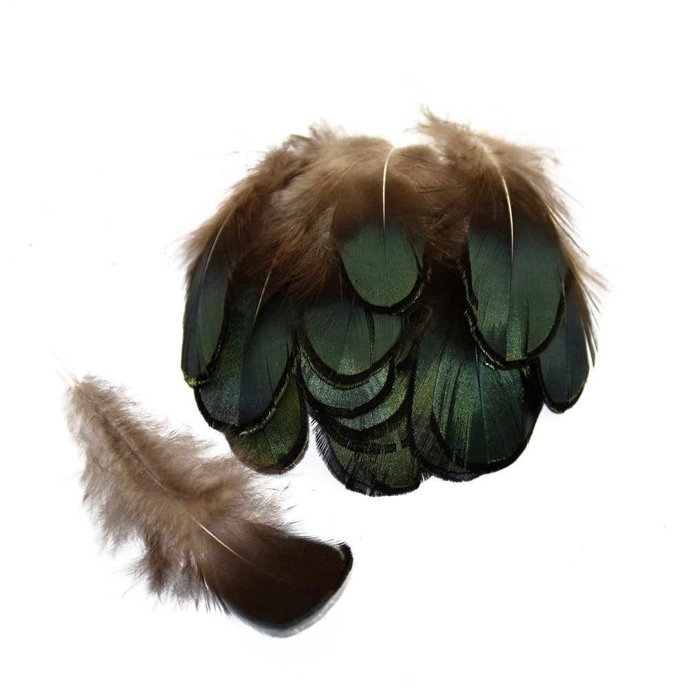 Everyshine 360/pcs Vert Faisan plumes de paon 2 7,9/cm