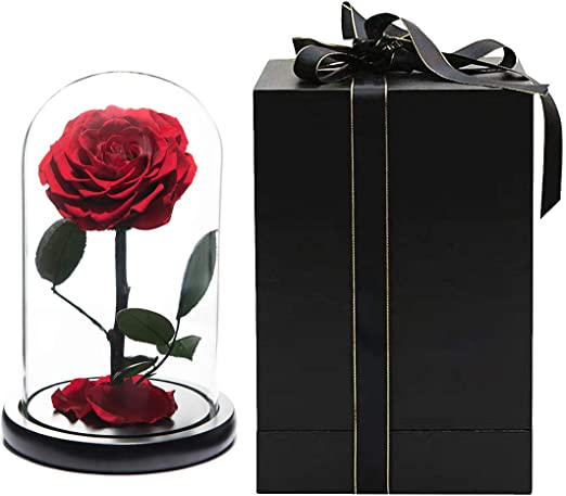 Eternal Rose Preserved Flower In Glass Dome Valentines Day Gifts Wedding Decor