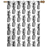 "HUANGLING Artistic Hand-Drawn Style Tropical Theme Vintage Style Pineapple Fruit Pattern Home Flag Garden Flag Demonstrations Flag Family Party Flag Match Flag 27""x37"""