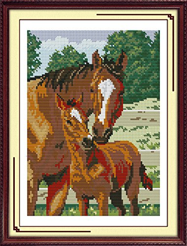 - Cross Stitch Embroidery Starter Kit including 14 Count 9