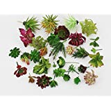 10 Pcs-Plastic Different Mini Succulents, Artificial Cactus Plant