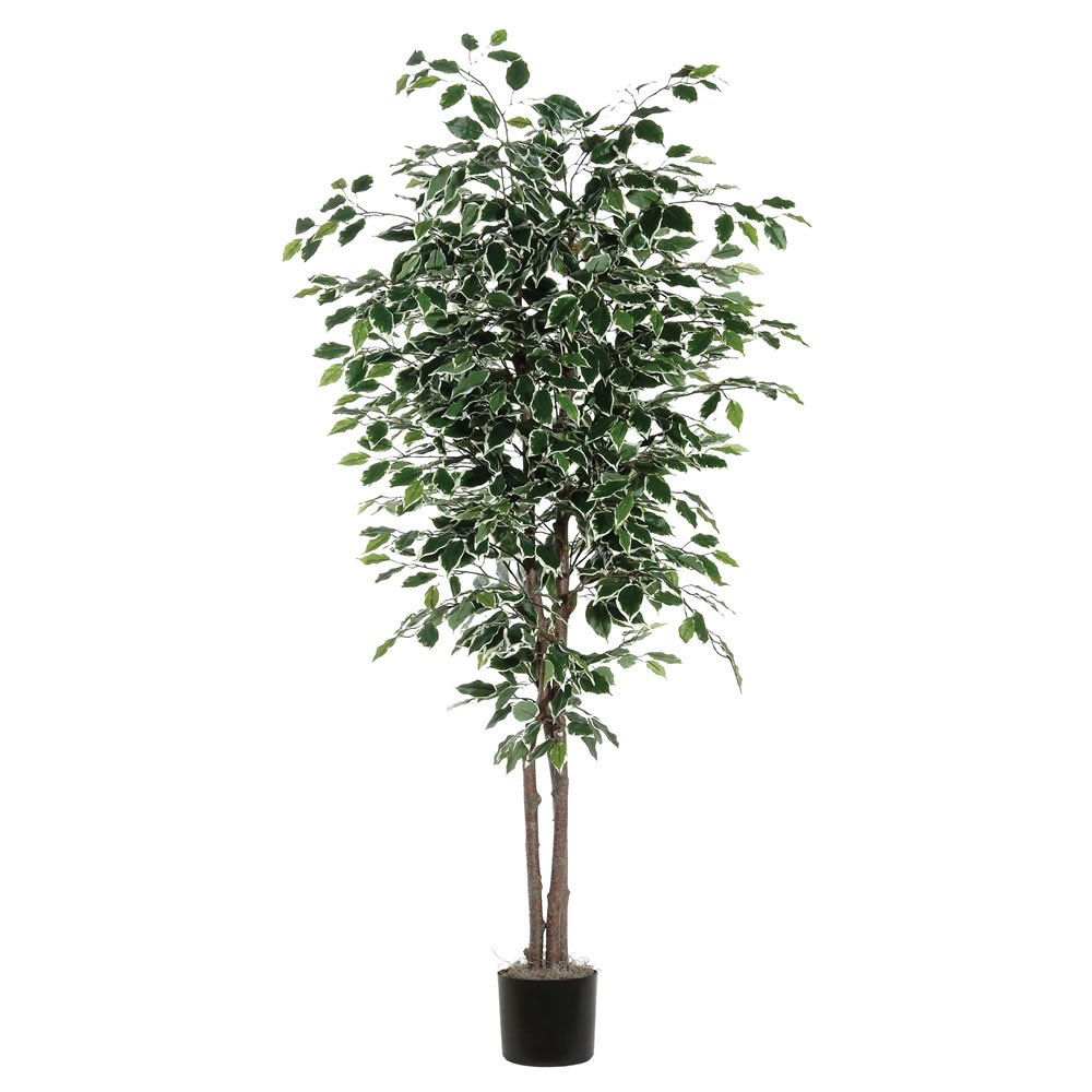 Vickerman TDX0270-07 Variegated Deluxe Tree, 7'