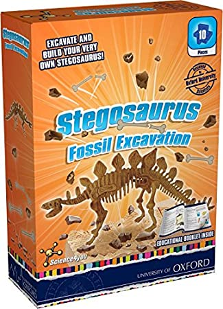Science4you Fossil Excavation Stegosaurus Kit  Educational Science Toy  STEM Toy