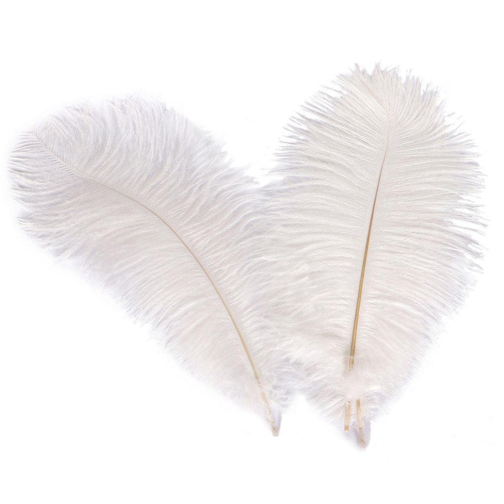 Wionya 20pcs Ostrich Feather Craft 10-12inch(25-30) Plume for Wedding Centerpieces Home Decoration