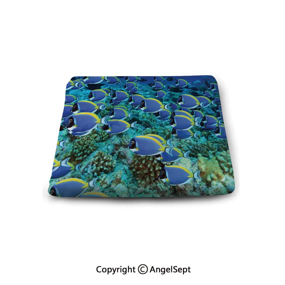 Square Chair Seat Cushion for Kitchen Dining Chairs,Ocean,School of Powder Blue Tang Fishes in The Coral Reef Maldives Deep Seas,Aqua Blue and Yellow,Memory Butt Pad Non Slip