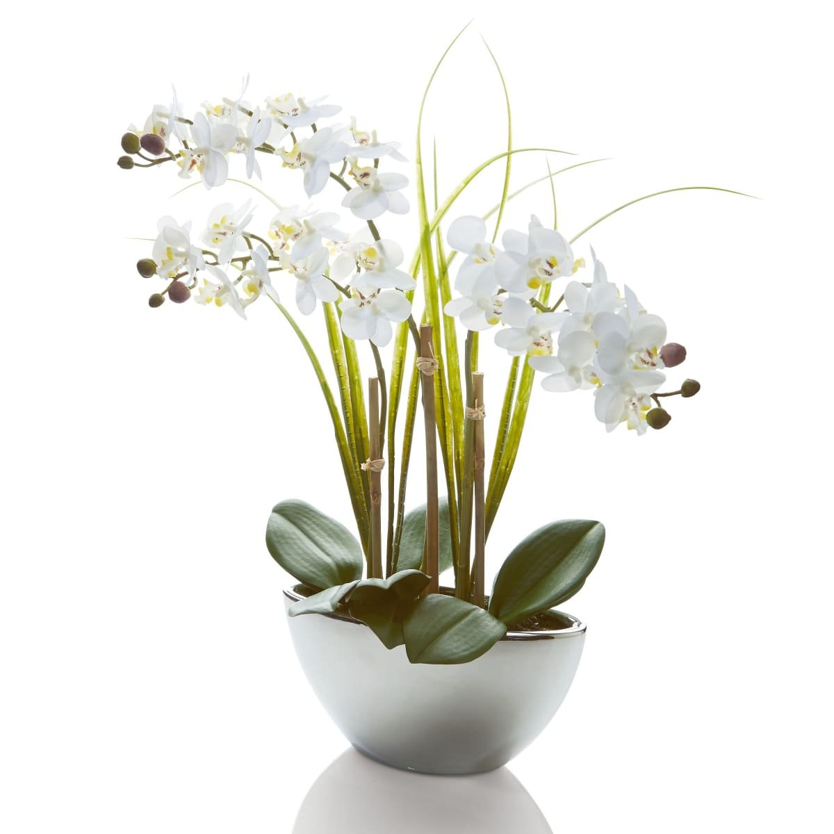 PureDay Artificial plant Orchid White Swing - Approx. h 50 cm