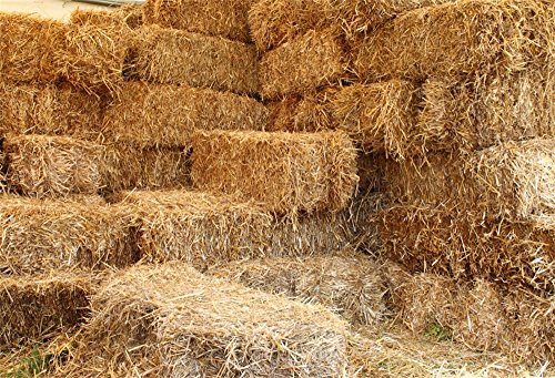 OFILA Farm Haystack Backdrop 5x3ft Barn Photography Background Western Ranch Photos Newborn Baby Photography Kids Cowboy Theme Birthday Party Decoration Cowgirls Portraits Country Style Photo Props -