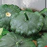 buy Seeds vegetable Patisson Gagat cucurbita pepo var.melopepo ERA from Ukraine 3 gram now, new 2018-2017 bestseller, review and Photo, best price $1.90