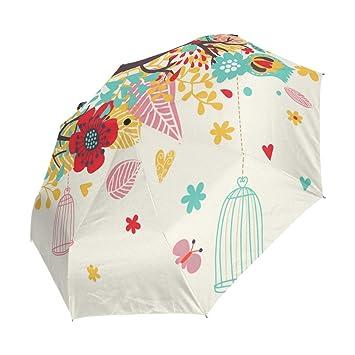 Amazon.com: Jacksome - Paraguas plegable para mujer, diseño ...