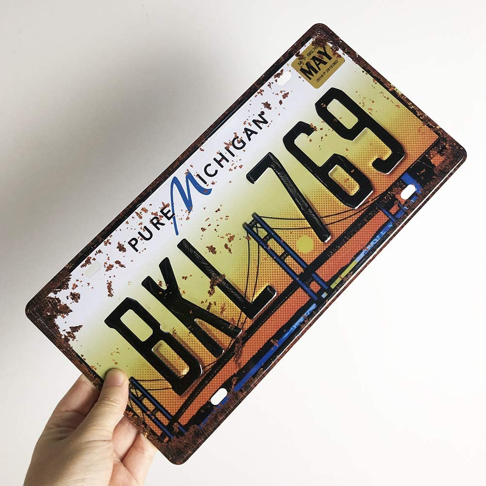 Embossed Retro Vintage License Plate US States Historical Tin Sign Auto Number Tags 6 X 12//15x30cm Michigan BKL