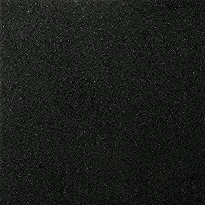 "Emser Tile Granite Tile, 12"" x 12"", Absolute Black"