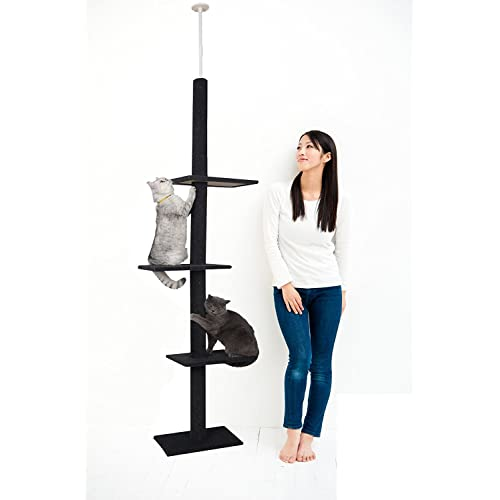 3 Tier Cat Tree Amazon Com