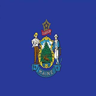 product image for Valley Forge Flag Made in America 3' x 5' Nylon Maine State Flag