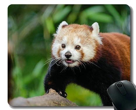 Yanteng Cojín de ratón Borde Cosido, desenfoque de la Panda ...