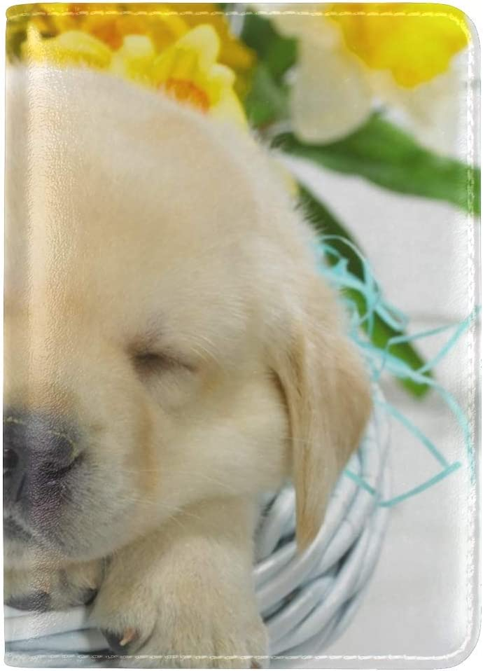 Puppies Labradors Basket Flowers Lie Leather Passport Holder Cover Case Travel One Pocket