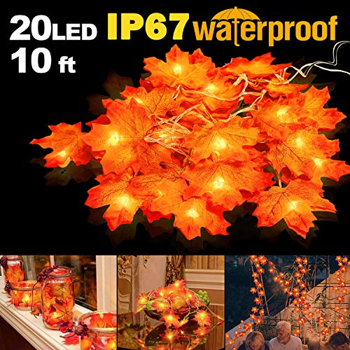 Outdoor Lighted Gifts in US - 9