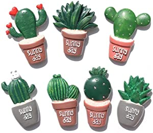 Cactus Magnets Refrigerator Magnet Fridge Magnet Cactus Kitchen Magnets Cute Magnets (7 pieces)