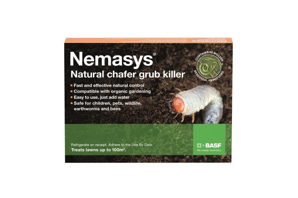 Nemasys chafer grub killer 100sqm for application NOW