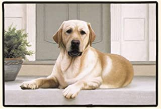 product image for Fiddler's Elbow Yellow Lab Porch Doormat