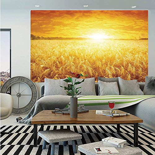 (SoSung Farm House Decor Huge Photo Wall Mural,Sunset Over Wheat Field Countryside Scenery in Summertime Idyllic Rural Landscape,Self-Adhesive Large Wallpaper for Home Decor 100x144 inches,Golden)