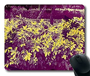 Nature Jd 16 Cool Comfortable Gaming Mouse Pad