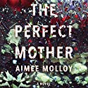 The Perfect Mother: A Novel Hörbuch von Aimee Molloy Gesprochen von: Cristin Milioti